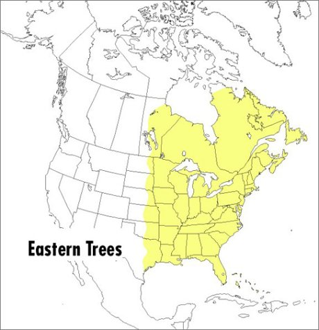 Field Guide to Eastern Trees Eastern United States and Canada, Including the Midwest 2nd 1998 edition cover
