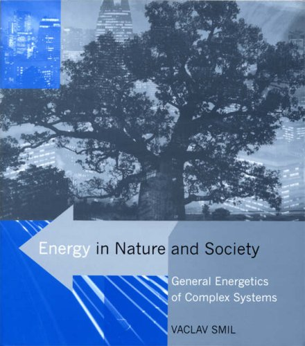 Energy in Nature and Society General Energetics of Complex Systems  2008 edition cover