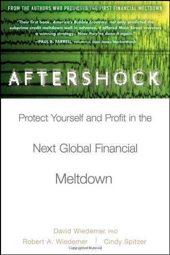 Aftershock Protect Yourself and Profit in the Next Global Financial Meltdown 2nd 2010 9780470481561 Front Cover