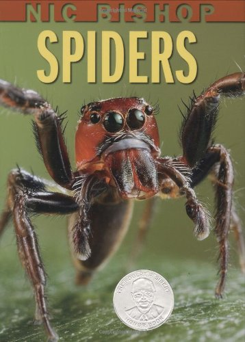 Spiders   2007 9780439877565 Front Cover