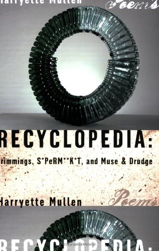 Recyclopedia Trimmings, S*Perm**K*T, and Muse and Drudge  2006 edition cover