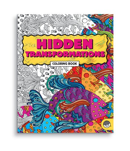 Hidden Transformations:  2007 edition cover
