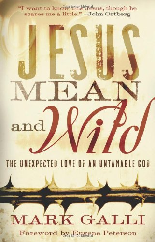 Jesus Mean and Wild The Unexpected Love of an Untamable God N/A edition cover