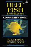Reef Fish Identification 4th Edition Florida, Caribbean, Bahamas 4th 2014 edition cover