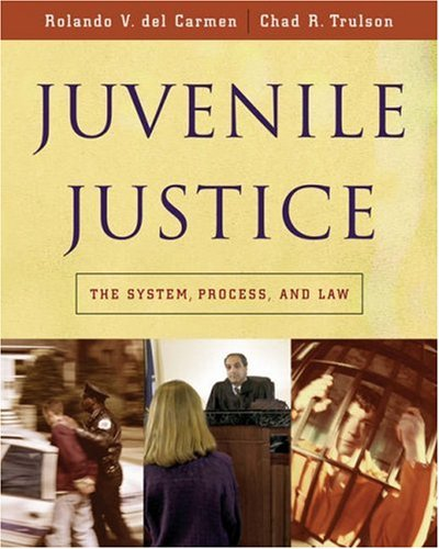 Juvenile Justice The System, Process and Law  2006 9780534521585 Front Cover