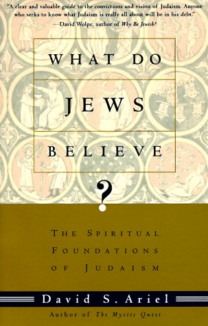 What Do Jews Believe? The Spiritual Foundations of Judaism  1995 (Reprint) edition cover