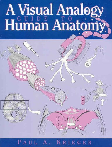 Visual Analogy Guide to Human Anatomy N/A edition cover