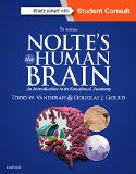 Nolte's the Human Brain An Introduction to Its Functional Anatomy 7th 2016 edition cover