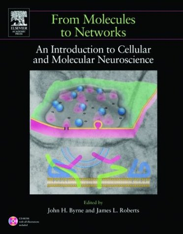 From Molecules to Networks An Introduction to Cellular and Molecular Neuroscience  2004 9780121486600 Front Cover