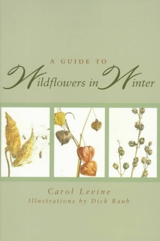 Guide to Wildflowers in Winter   1995 edition cover