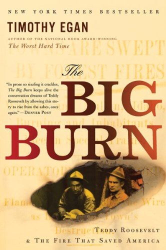 Big Burn Teddy Roosevelt and the Fire That Saved America  2009 9780547394602 Front Cover