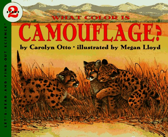 What Color Is Camouflage?   1996 edition cover