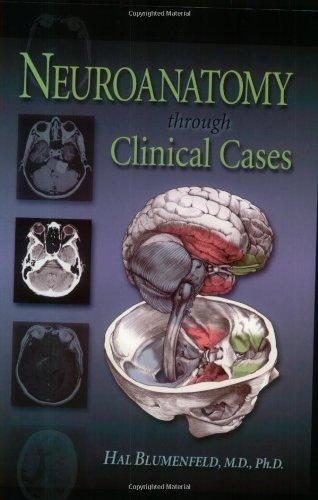Neuroanatomy Through Clinical Cases   2002 edition cover