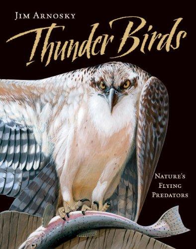 Thunder Birds Nature's Flying Predators  2011 edition cover