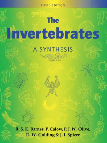 Invertebrates A Synthesis 3rd 2001 (Revised) edition cover