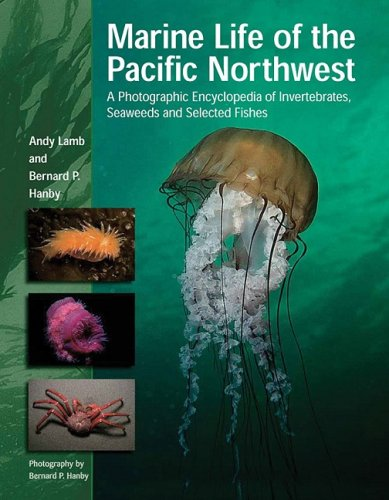 Marine Life of the Pacific Northwest A Photographic Encyclopedia of Invertebrates, Seaweeds and Selected Fishes  2005 (Unabridged) 9781550173611 Front Cover