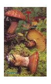 Mushroom Manual - Tops! Complete for College Class Simple for You and Me N/A 9780879611613 Front Cover