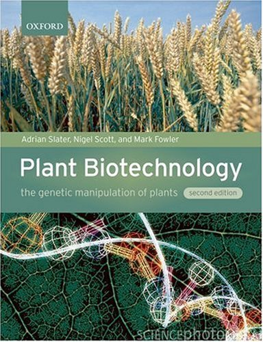 Plant Biotechnology The Genetic Manipulation of Plants 2nd 2007 (Revised) edition cover