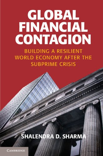 Global Financial Contagion Building a Resilient World Economy after the Subprime Crisis  2013 9781107609617 Front Cover