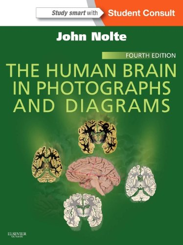 Human Brain in Photographs and Diagrams With STUDENT CONSULT Online Access 4th 2014 edition cover