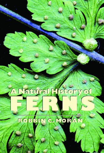 Natural History of Ferns   2009 edition cover
