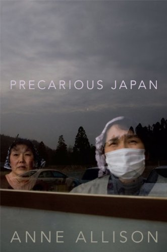 Precarious Japan   2013 edition cover