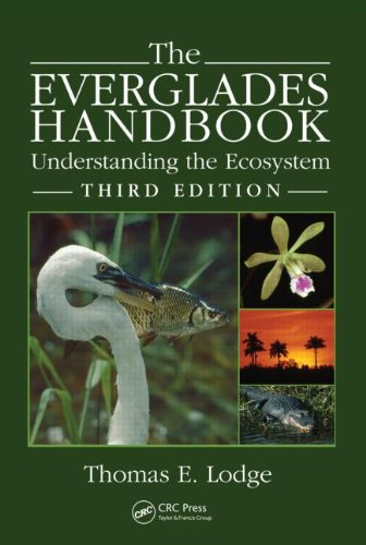 Everglades Understanding the Ecosystem 3rd 2010 (Revised) edition cover