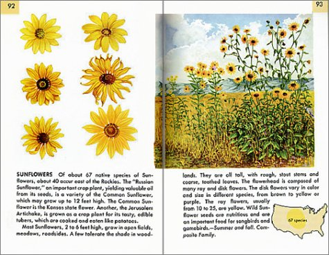 Wildflowers Fully Illustrated, Authoritative, Easy-to-Use  2002 (Revised) edition cover