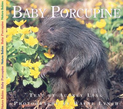 Baby Porcupine   2005 9781550415629 Front Cover