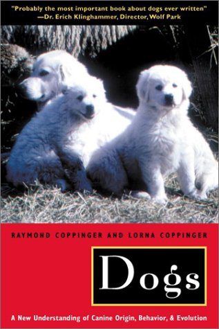 Dogs A New Understanding of Canine Origin, Behavior and Evolution  2001 (Reprint) 9780226115634 Front Cover