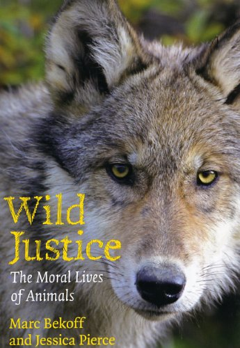 Wild Justice The Moral Lives of Animals  2010 9780226041636 Front Cover
