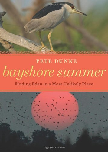 Bayshore Summer Finding Eden in a Most Unlikely Place  2010 9780547195636 Front Cover