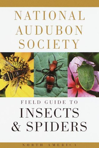 National Audubon Society Field Guide to North American Insects and Spiders  1980 edition cover