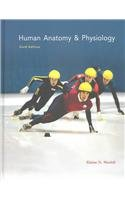 Human Anatomy and Physiology  6th 2003 edition cover