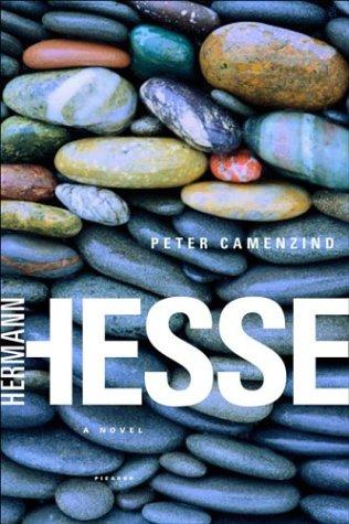 Peter Camenzind A Novel  2003 edition cover