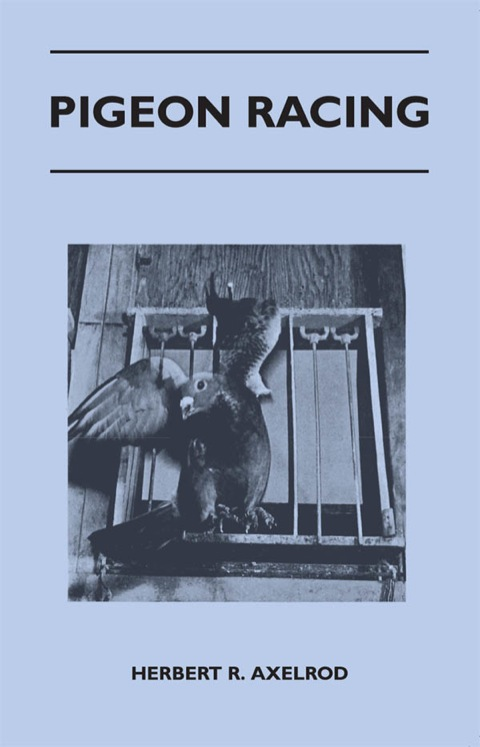 Pigeon Racing N/A 9781447484639 Front Cover