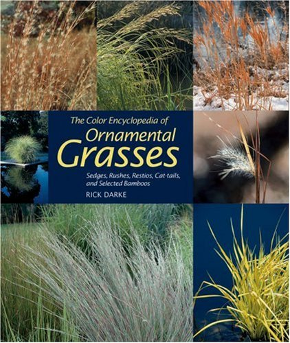 Color Encyclopedia of Ornamental Grasses Sedges, Rushes, Restios, Cat-Tails and Selected Bamboos  1999 edition cover
