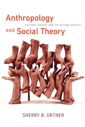 Anthropology and Social Theory Culture, Power, and the Acting Subject  2006 edition cover