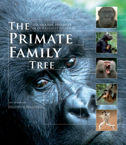 Primate Family Tree The Amazing Diversity of Our Closest Relatives  2011 9781554079643 Front Cover