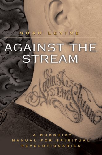 Against the Stream A Buddhist Manual for Spiritual Revolutionaries  2007 edition cover