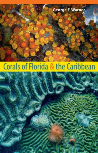 Corals of Florida and the Caribbean   2012 edition cover