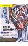 Cengage Advantage Books: Juvenile Delinquency  5th 2014 edition cover