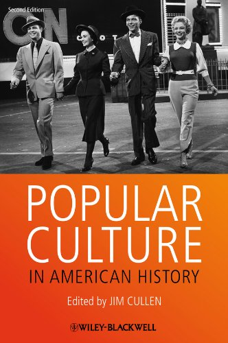 Popular Culture in American History  2nd 2013 edition cover