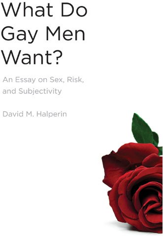 What Do Gay Men Want? An Essay on Sex, Risk, and Subjectivity N/A 9780472033652 Front Cover