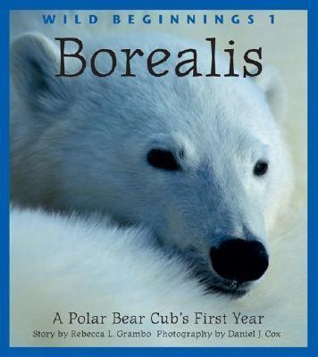Borealis A Polar Bear Cub's First Year  2003 9781552854655 Front Cover