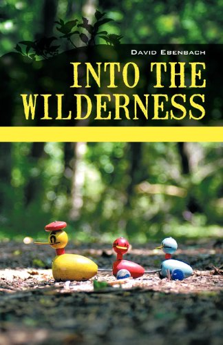 Into the Wilderness A Collection of Short Fiction  2012 edition cover