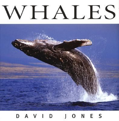 Whales   2005 (Revised) 9781552856659 Front Cover
