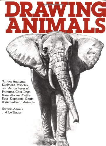 Drawing Animals  30th 2009 edition cover
