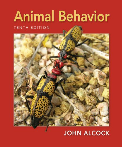 Animal Behavior An Evolutionary Approach 10th 2013 (Revised) 9780878939664 Front Cover