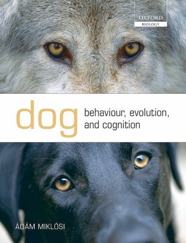 Dog Behaviour, Evolution, and Cognition   2008 edition cover